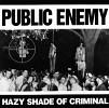 public-enemy-158935.jpg