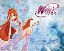 winx-club-451254.jpg