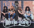 white-lion-233463.jpg