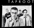 taproot-44259.jpg