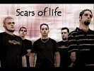 scars-of-life-483687.jpg