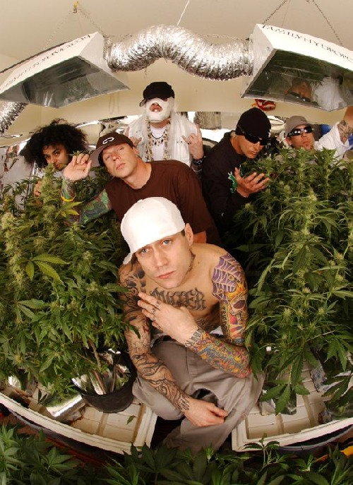 Kottonmouth kings picture