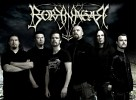 borknagar-246625.jpg