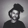 the-weeknd-561208.jpg