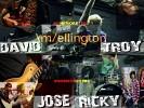 wellington-296759.jpg