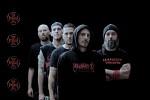 reincarnation-566425.jpg
