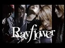 rayflower-493809.jpg