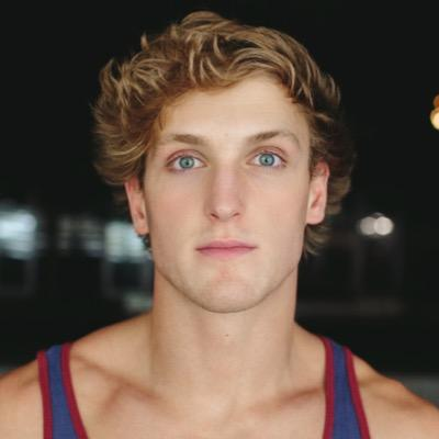 summary on essay zero by paul logan Paul logan college dropout by the end of his first semester of freshman year attended a local community college graduated from with a 40 gpa he had his essay published in.