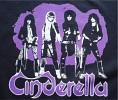 cinderella-592222.jpg