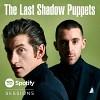 the-last-shadow-puppets-594614.jpg