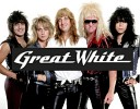great-white-533994.jpg