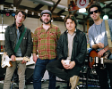 wolf-parade-569856.png