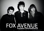 fox-avenue-213142.jpg