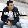 adam-brand-256532.jpg