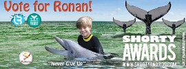 ronan-parke-412260.jpg