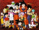 dragon-ball-z-shin-budokai-301145.jpg