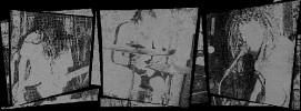 zed-566703.jpg