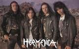 hermetica-495731.jpg