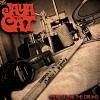 jaya-the-cat-350512.jpg