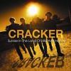 cracker-351898.jpg