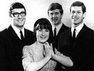 the-seekers-543169.jpg