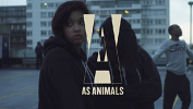 as-animals-498531.png