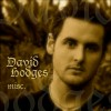 david-hodges-501155.png