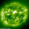 wolfcool-546704.jpg