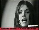 caterina-caselli-617424.jpg