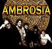 ambrosia-582745.jpg