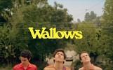 wallows-617895.jpg