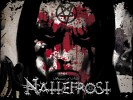 nattefrost-599430.jpg