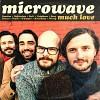 microwave-622386.jpg