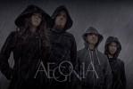 aegonia-624588.jpg