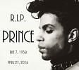 prince-621658.jpg